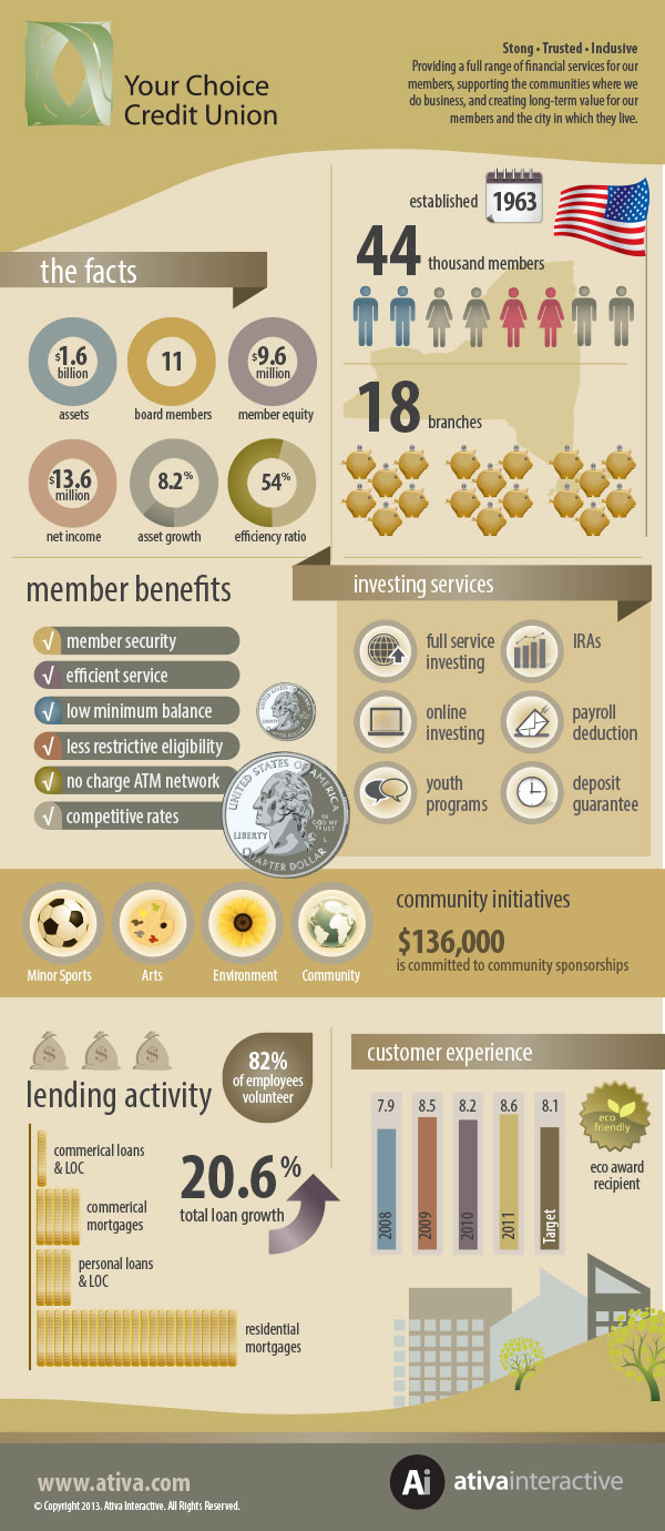 Credit Union Summary Infographic